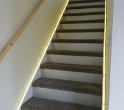 Stair risers plated with glitter boards and pigs ear handrails
